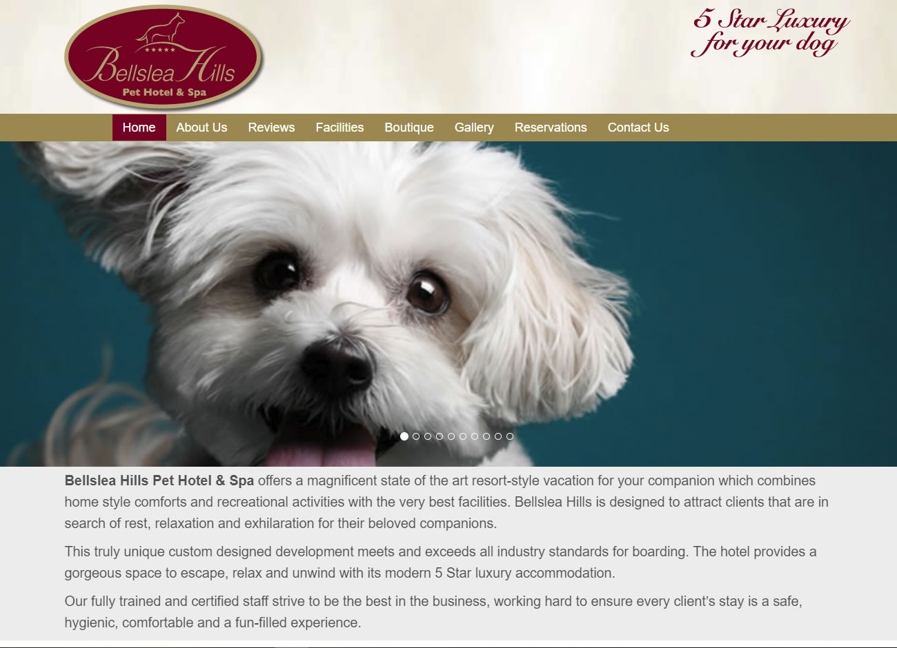 Bellslea Hills Pet Hotel & Spa - Website Design Ayrshire